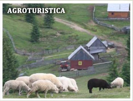 agro-turistica