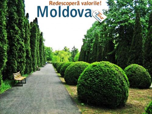 gradina-botanica-iasi-nordul-moldovei