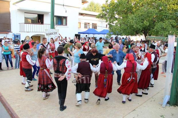 Festivalul VINUL NOU Ostrov 3 (1)