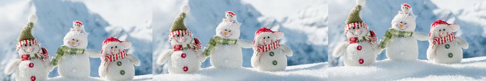 banner-winter2