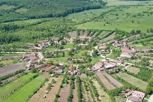 Sarlota (1)