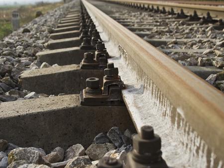 tren-sina-shutterstock (1)