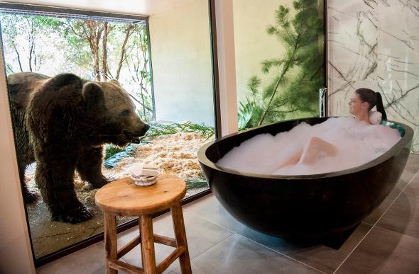 bear-bungalow
